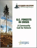 BC Forests in Crisis