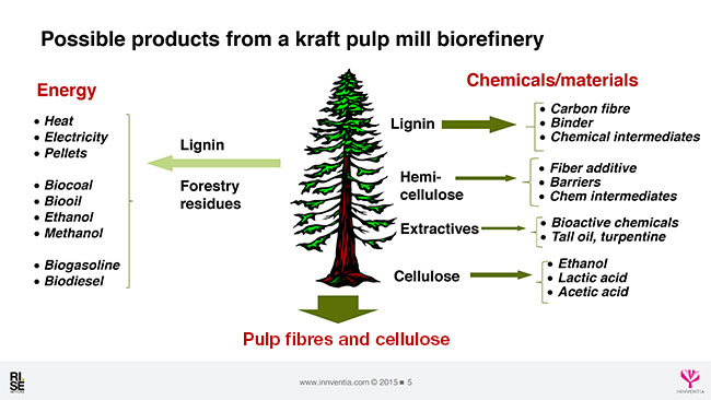axegard kraft biorefinery 5