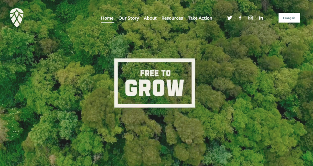 Growing the industry: Forestry's gender equity plan delivers new online hub